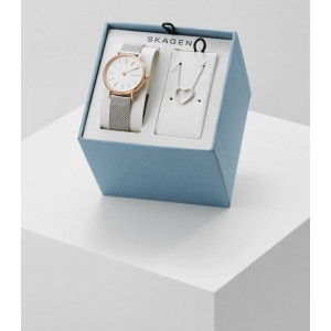 SKW1106 Skagen Signatur watch set